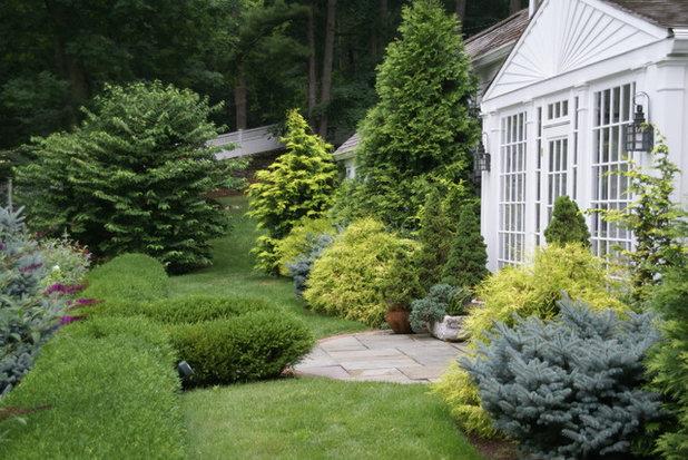 トラディショナル 庭 by Spring Lake Garden Design