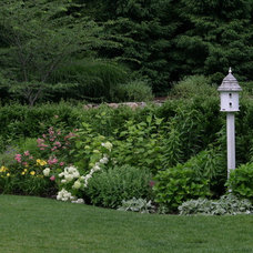 Traditional Landscape by Rock Spring Design Group LLC (David Verespy, ASLA)