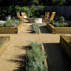 Contemporary Landscape by Design By Nature Landscape Studio