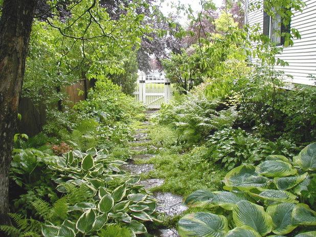 Wie Lasst Sich Ein Schattengarten Schon Gestalten