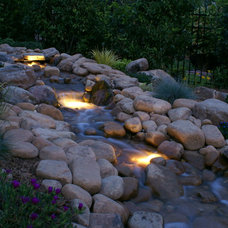 Traditional Landscape by Niche Gardens Landscaping, Inc.