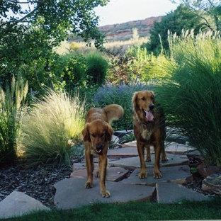 Inspiration for a huge rustic drought-tolerant backyard stone landscaping in Denver for summer.