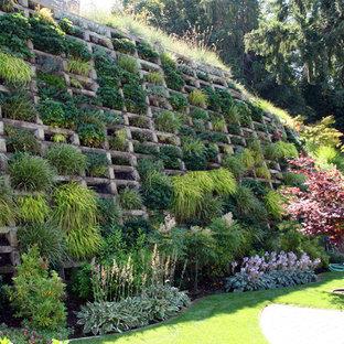 Inspiration för moderna bakgårdar, med en vertikal trädgård