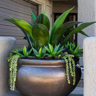 This is an example of a small modern drought-tolerant and partial sun backyard stone landscaping in Phoenix.