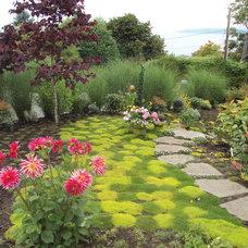 Eclectic Landscape by Noland Landscape Design