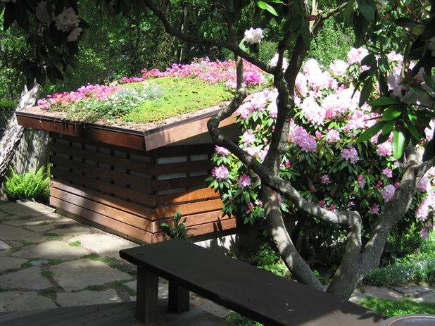 Modern Garden by Noland Landscape Design