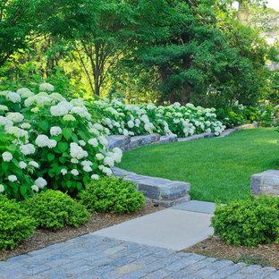 Bild på en vintage trädgård