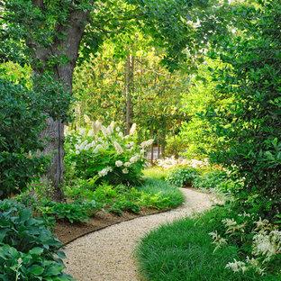 ワシントンD.C.のトラディショナルスタイルのおしゃれな庭の写真