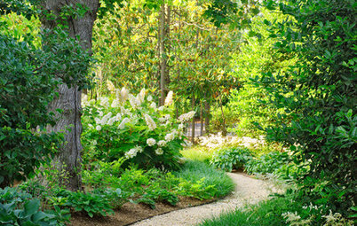 Unwind in Your Own Private Garden Escape
