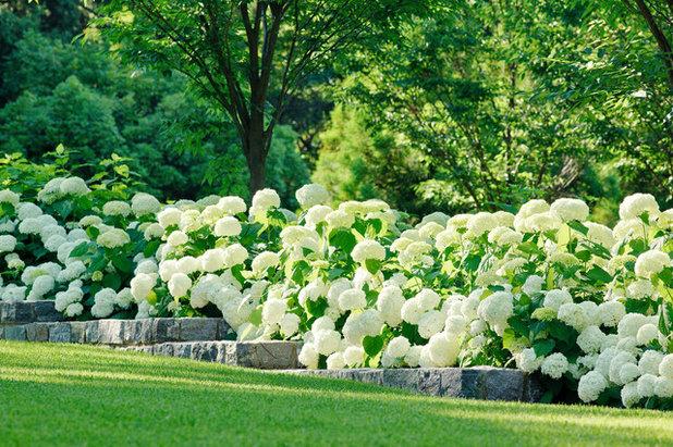 Classique Jardin by Katia  Goffin  Gardens