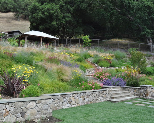Xeriscape Hillside Ideas Pictures Remodel And Decor