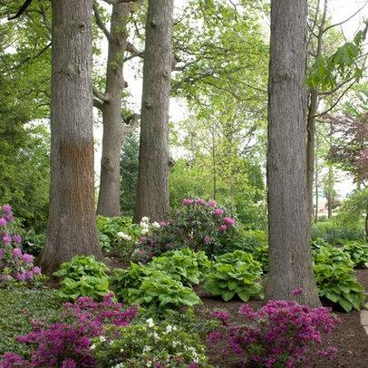 No maintenance landscaping ideas florida for No maintenance landscaping ideas