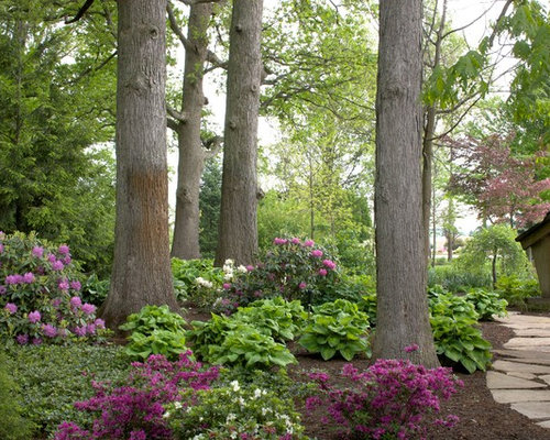 design ideas for a large traditional shade backyard landscaping in chicago with a garden path and