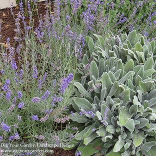 Свежая идея для дизайна: большой солнечный, летний засухоустойчивый сад на переднем дворе в средиземноморском стиле с хорошей освещенностью, мульчированием и садовой дорожкой или калиткой - отличное фото интерьера