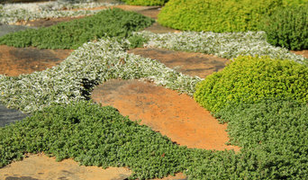 NSG Ground Covers