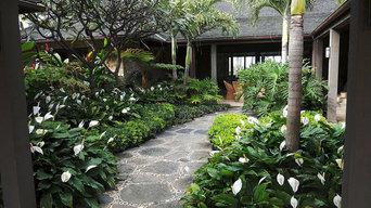 Oahu Landscapes