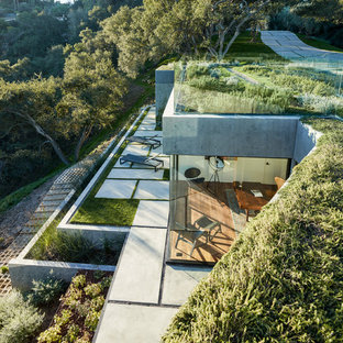 Design ideas for a modern rooftop landscaping in Los Angeles.
