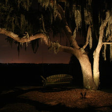 Landscape by Moonlighting Landscape Lighting Systems