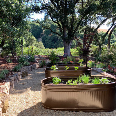 Design ideas for a huge contemporary drought-tolerant and partial sun side yard gravel landscaping in San Francisco for summer.
