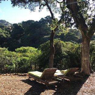Photo of a huge contemporary full sun and drought-tolerant hillside mulch landscaping in San Francisco for winter.
