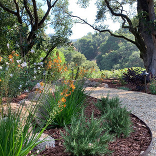 Inspiration for a huge rustic drought-tolerant and partial sun backyard mulch garden path in San Francisco for summer.