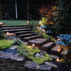 Traditional Landscape Hamby Oaks