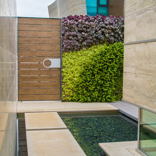 Inspiration for a contemporary partial sun side yard concrete paver water fountain landscape in Orange County.