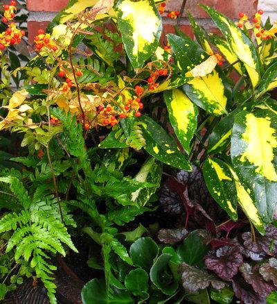 Que planter dans son jardin au mois d 39 octobre for Jardin que planter