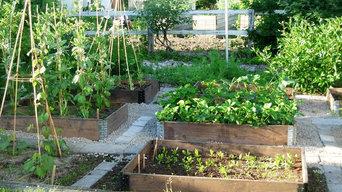 odla dina grönsaker - och skörda - EFTER anläggning