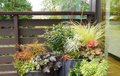 9 Ways to Refresh Your Summer Container Gardens for Fall