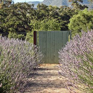 Photo of a mediterranean gravel garden path in Santa Barbara.