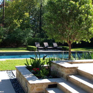 Design ideas for a mid-sized contemporary backyard partial sun garden in Houston with concrete pavers.