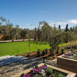 This is an example of an expansive farmhouse side formal full sun garden in San Francisco with a vegetable patch and gravel.