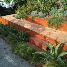 Modern Landscape by Urban Organics Design, Inc.