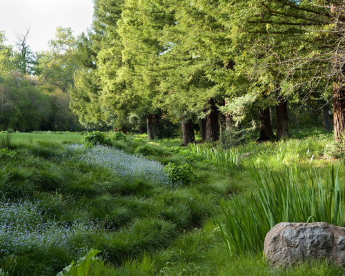 Natural landscape houzz for Natural garden designs