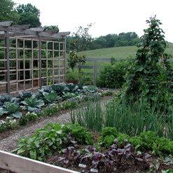 Renatta Holt Of Merrifield Garden Center   Fairfax, VA, US 22030