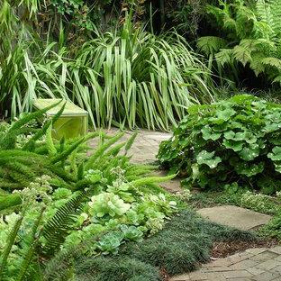 Osito Garden