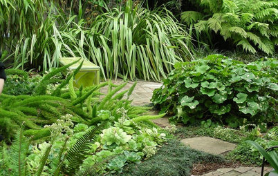 8 Sumptuous Shade Garden Plant Combinations