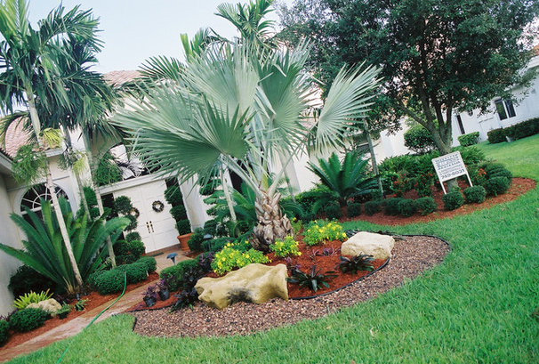 Tropical Landscape by Bamboo Landscaping