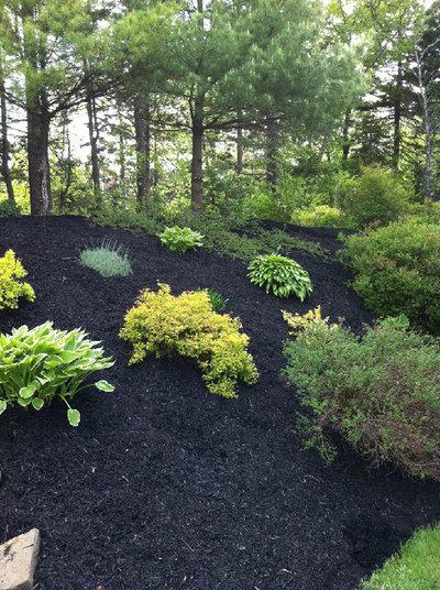 Contemporary Garden by Coastal Elegance Property Maintenance