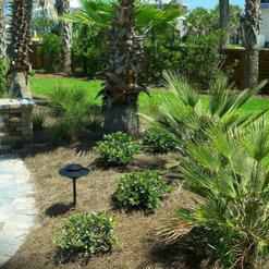 Ken Griffin Landscape Gulf Breeze Fl Us 32563