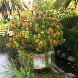 Foto de jardín francés, clásico, extra grande, en verano, en ladera, con estanque, exposición total al sol y adoquines de piedra natural