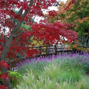 Mittelgroßer, Geometrischer, Halbschattiger Klassischer Garten hinter dem Haus mit Gartenweg und Betonplatten in San Francisco