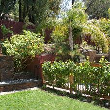 Tropical Landscape by Donna Lynn - Landscape Designer