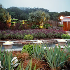 Mediterranean Landscape by Integrated Design Studio, Inc.