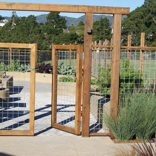 Ispirazione per un grande giardino contemporaneo esposto in pieno sole dietro casa con pavimentazioni in cemento