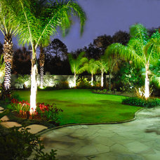 Tropical Landscape by Pinnacle Lighting Group