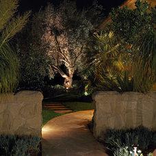 Modern Landscape by McKay Landscape Lighting