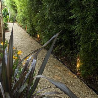 Idéer för en modern trädgård längs med huset