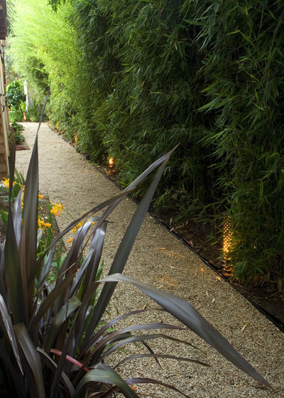 Contemporary Garden by Shades Of Green Landscape Architecture